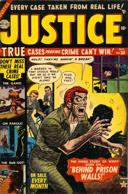 Justice 30 Cover Image
