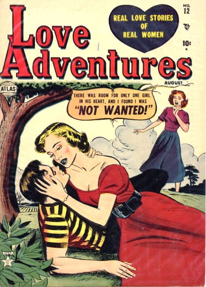 Love Adventures 12 Cover Image