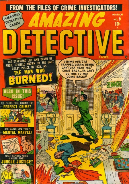 Amazing Detective Cases 5 Cover Image