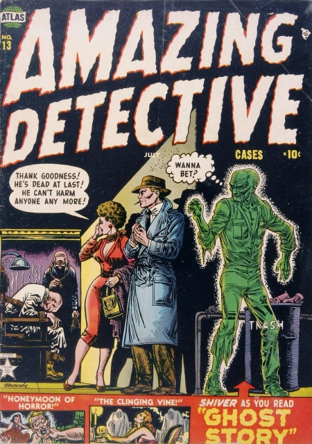 Amazing Detective Cases 13 Cover Image