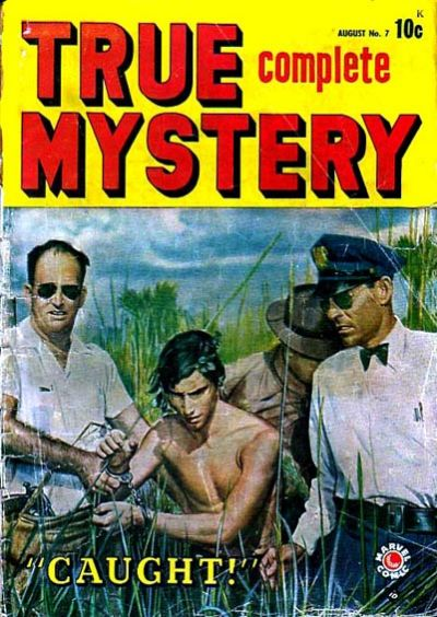 True Complete Mystery 7 Cover Image