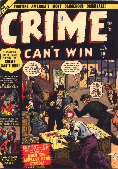 Crime Can't Win 9 Cover Image